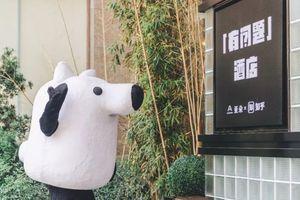 """第一家知乎酒店上海开业!很跨界也很""""有问题"""""""
